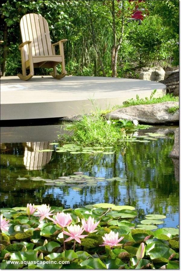 Imagine the Water Garden Dream