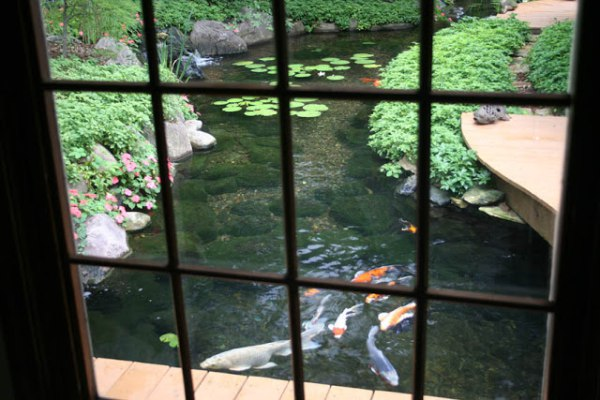 Outdoor Water Garden Koi Pond
