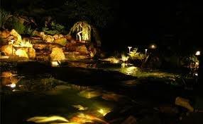 Pond Lighting at Night