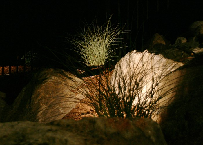 landscape lighting to make the landscaping stand out amidst the dark.