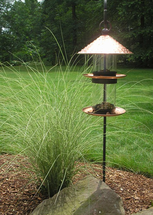 Ornamental Grass and bird feeder in CT