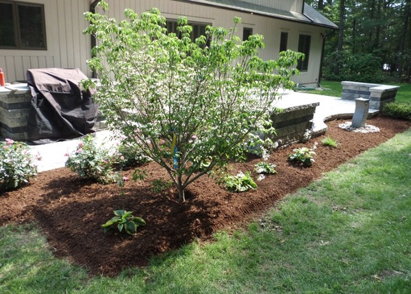 Simple landscape shrubs and trees surround a raised patio by Bahler Brothers in CT