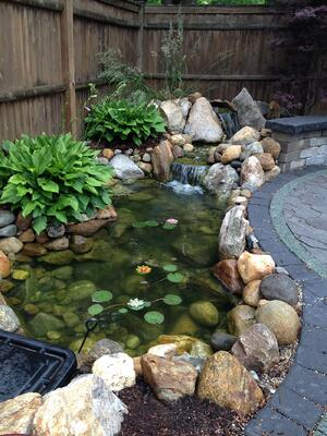 Water Feature next to Patio