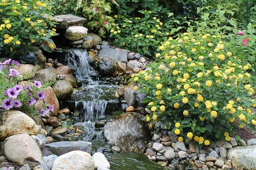 small pondless water feature and stream