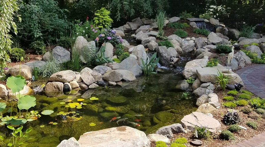 koi pond with 2 streams and wetland bio filter installed in Connecticut by Bahler Brothers